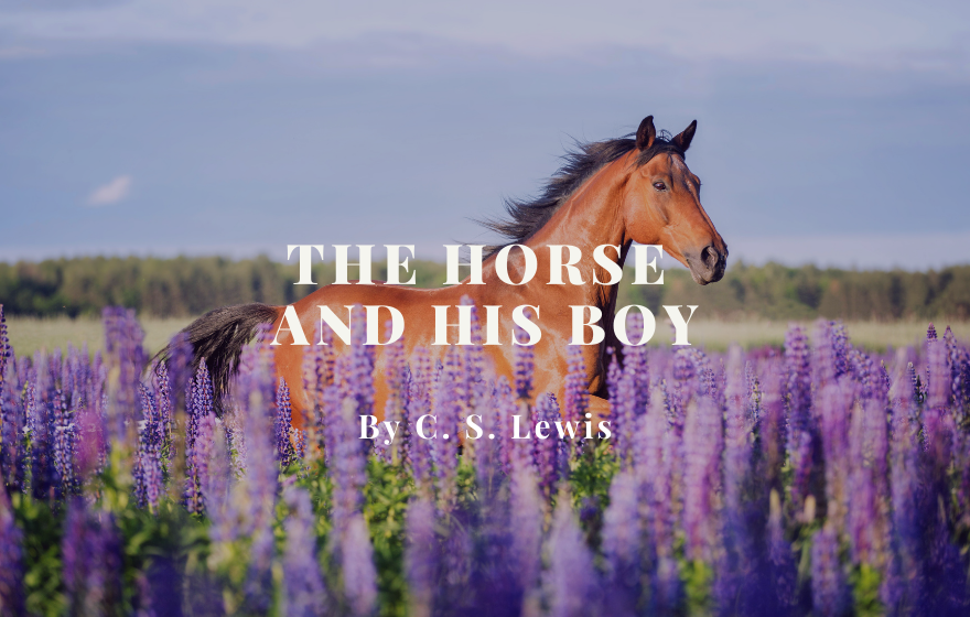 RC: The Horse and His Boy